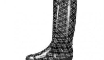 zapatos terra 12