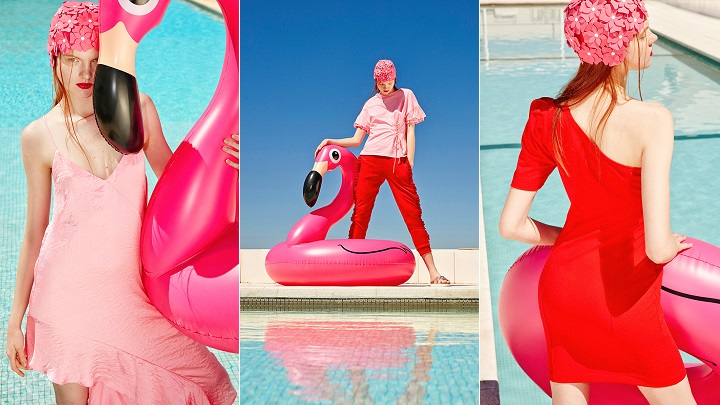 Pink-Flamingo-foto1