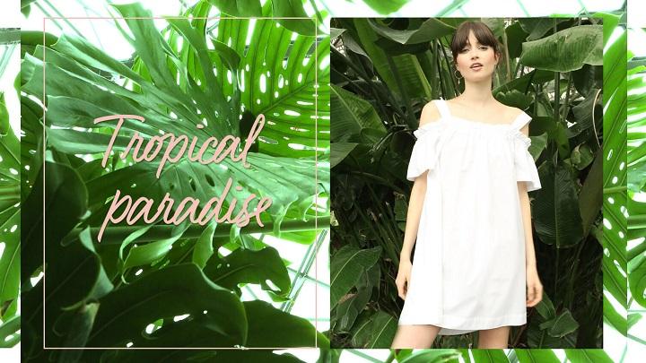 Tropical-Paradise-foto